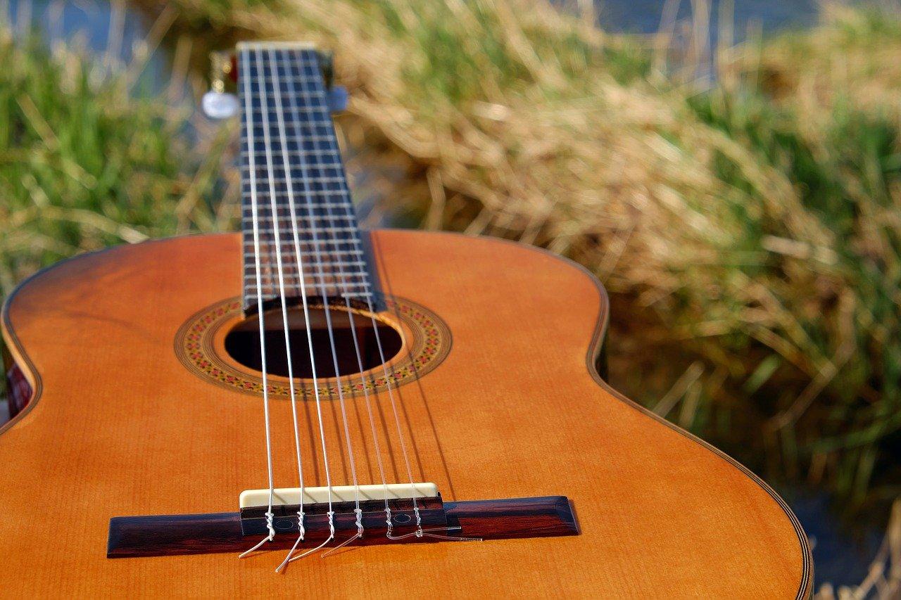 En gitarr i gräset